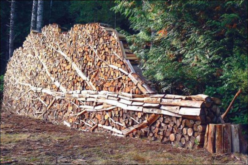 firewood_stack_16
