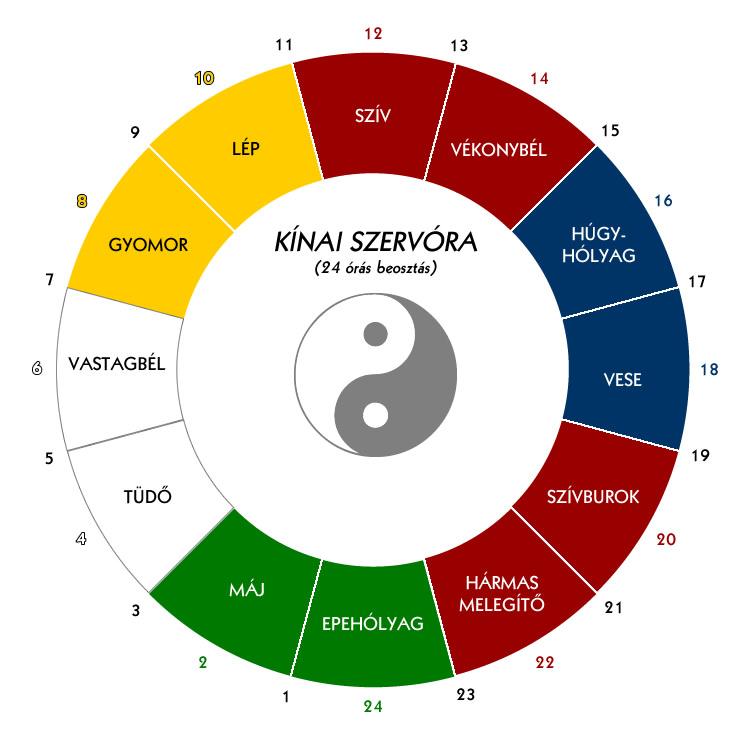 szervóra3